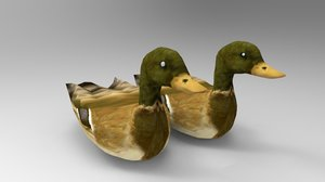 swimming ducks 3D model