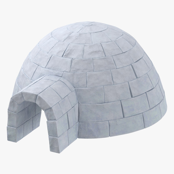3D igloo stemcell model