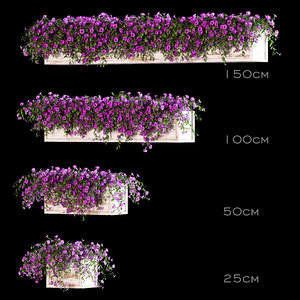 3D model balcony boxes flowers