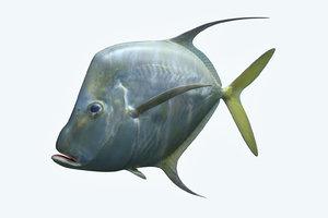 selene fish 3D