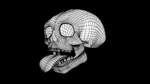 3D skull tongue model