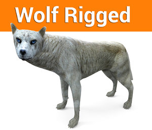 3D model wolf rigged