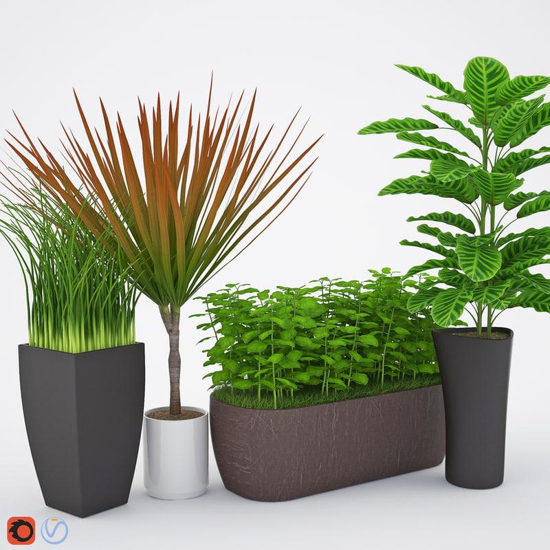 houseplant 7 1 3D model