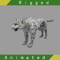 3D snow leopard rigged animations model