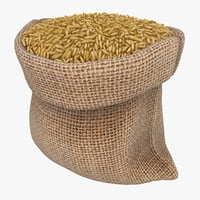 3D model realistic sack brown rice