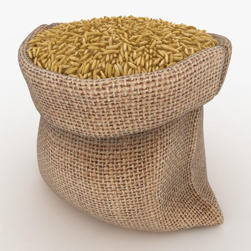 3D model realistic sack brown rice