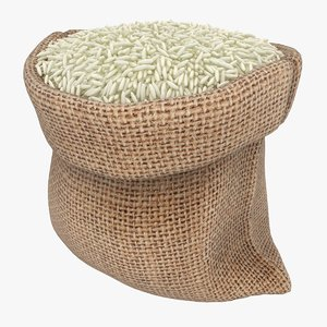 realistic sack rice 3D model