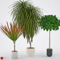 3D houseplant 8