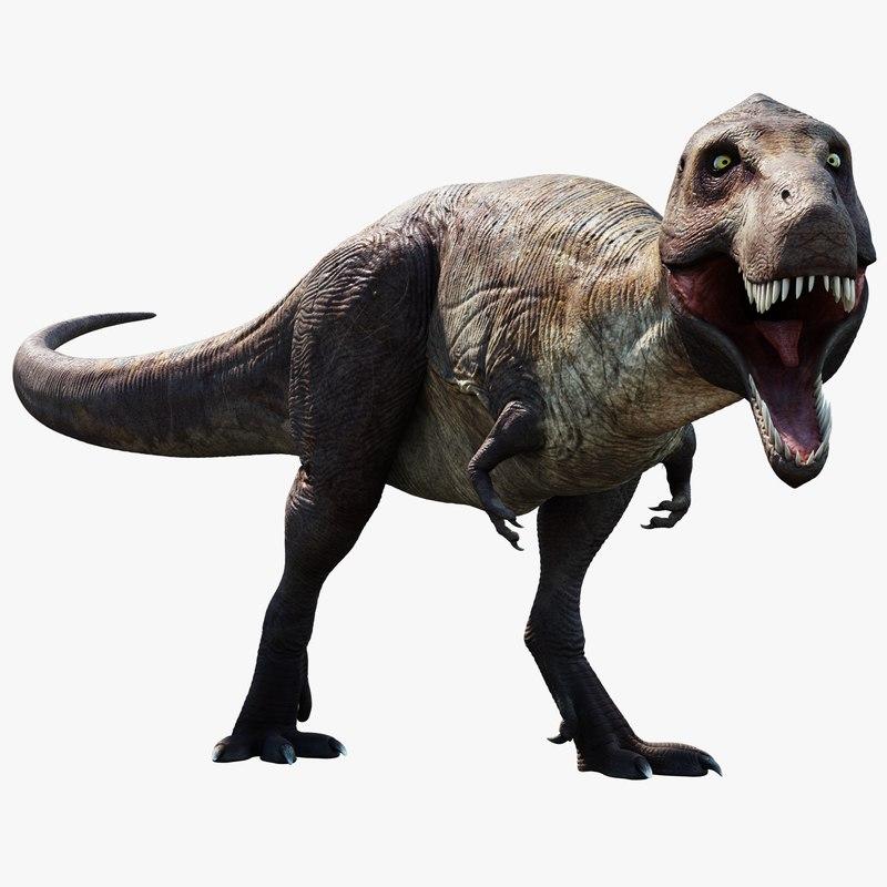tyrannosaurus 3D model