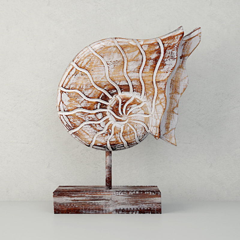 balinese wood nautilus shell model
