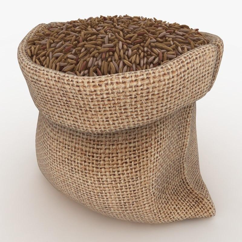 3D realistic sack brown rice