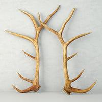 Monumental Unmounted Elk Antlers