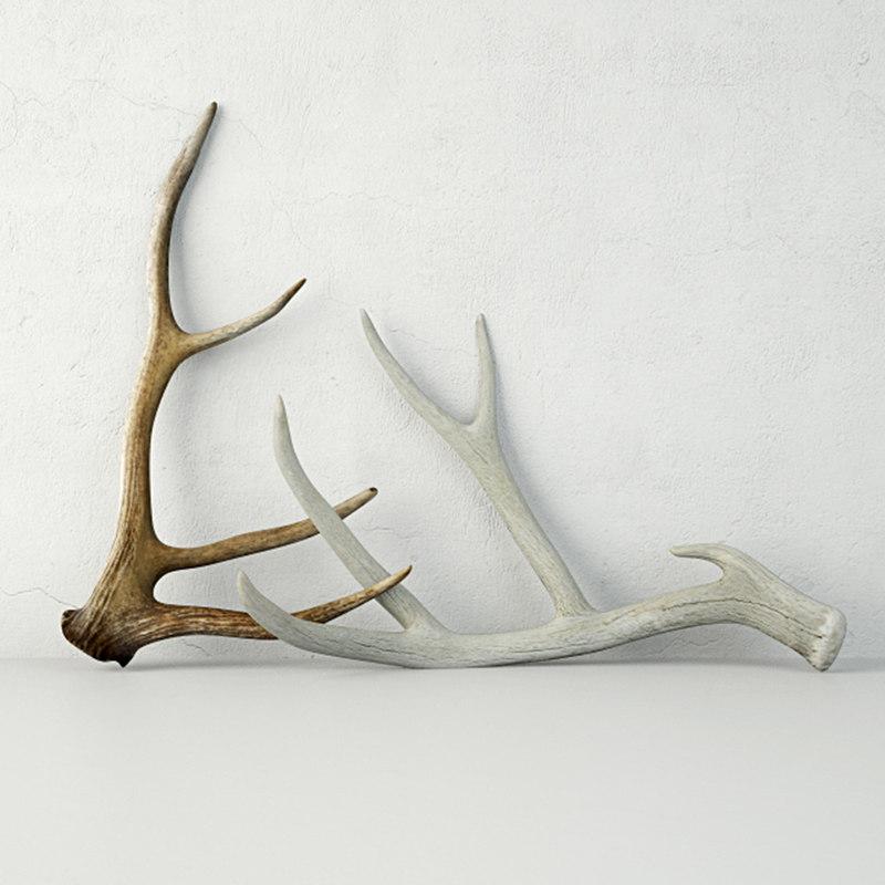 deer antlers 3D