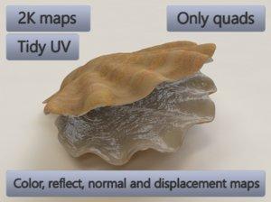 3D seashell accessory decoration