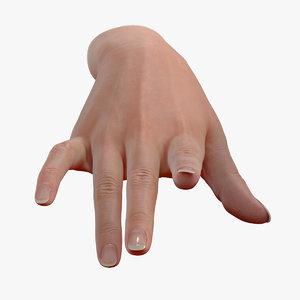 3D realistic female hand file