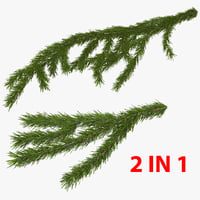 Christmas Fir Branch Collection