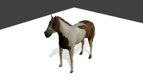paint horse games 3D