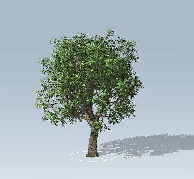 3D grow