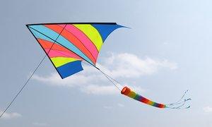 classic wind kite 3D