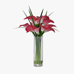 3D pink calla lilies model