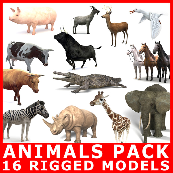 18 animals pack rigging 3D model