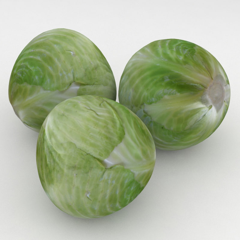 3D vegetable cabbage