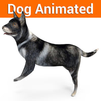 german shepherd dog rigged 3D model