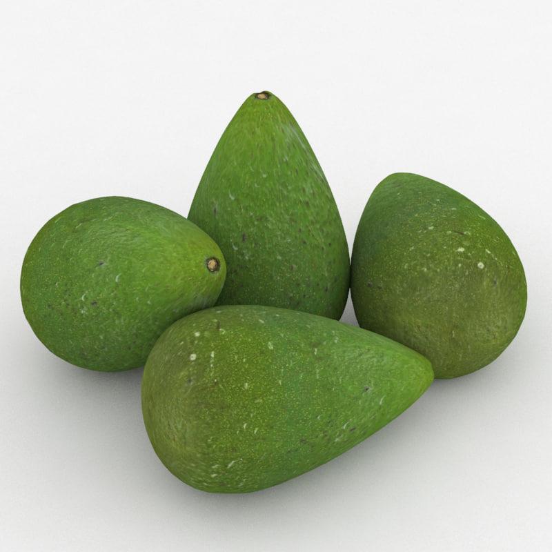 fruit avocado 3D