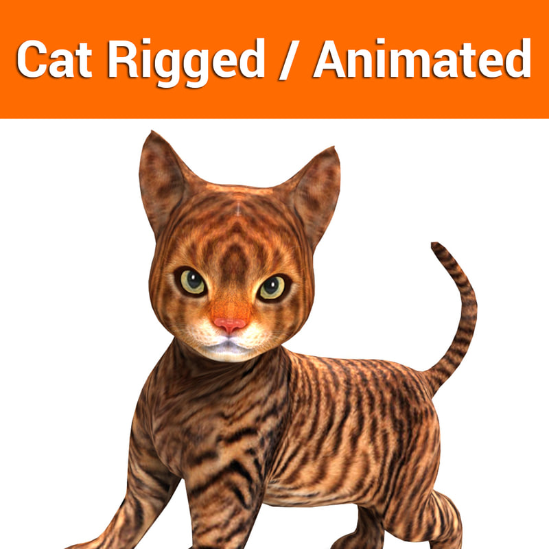 cat rigged animation 3D model