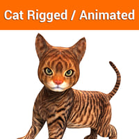 cute cat rigged animated