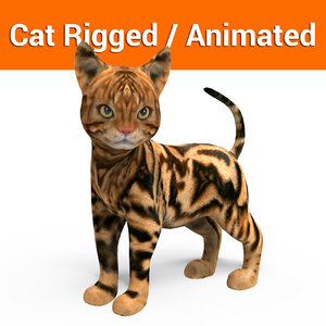 3D cat rigged animation