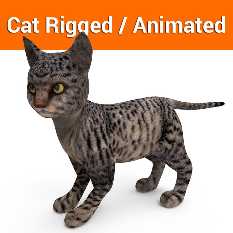 cat rigged animation model