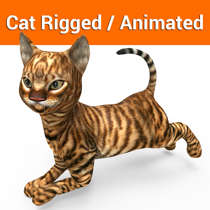 3D cat rigged animation model