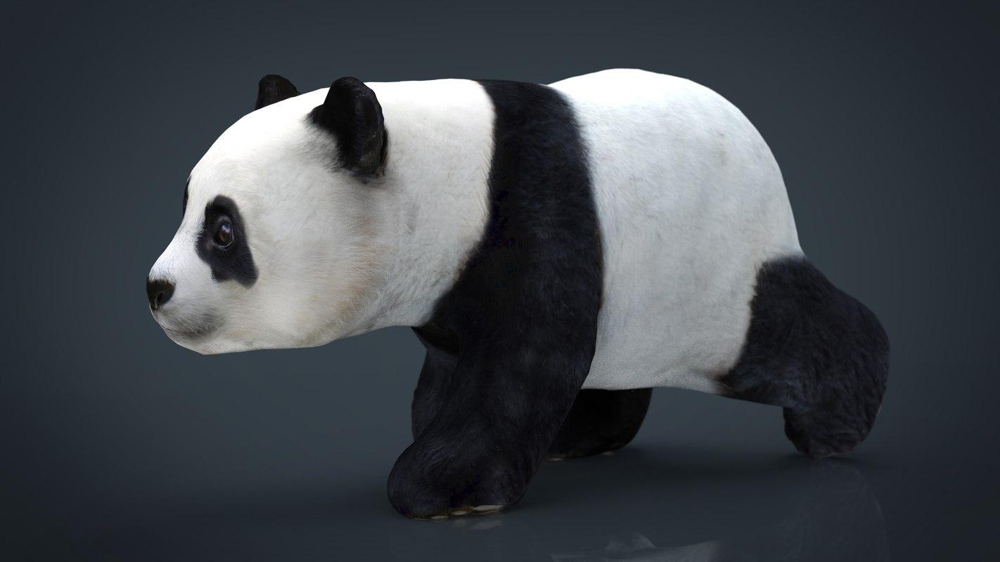 panda 3D model
