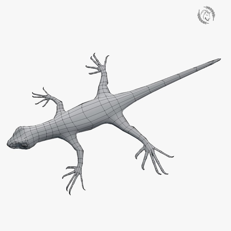 gekko lizard model