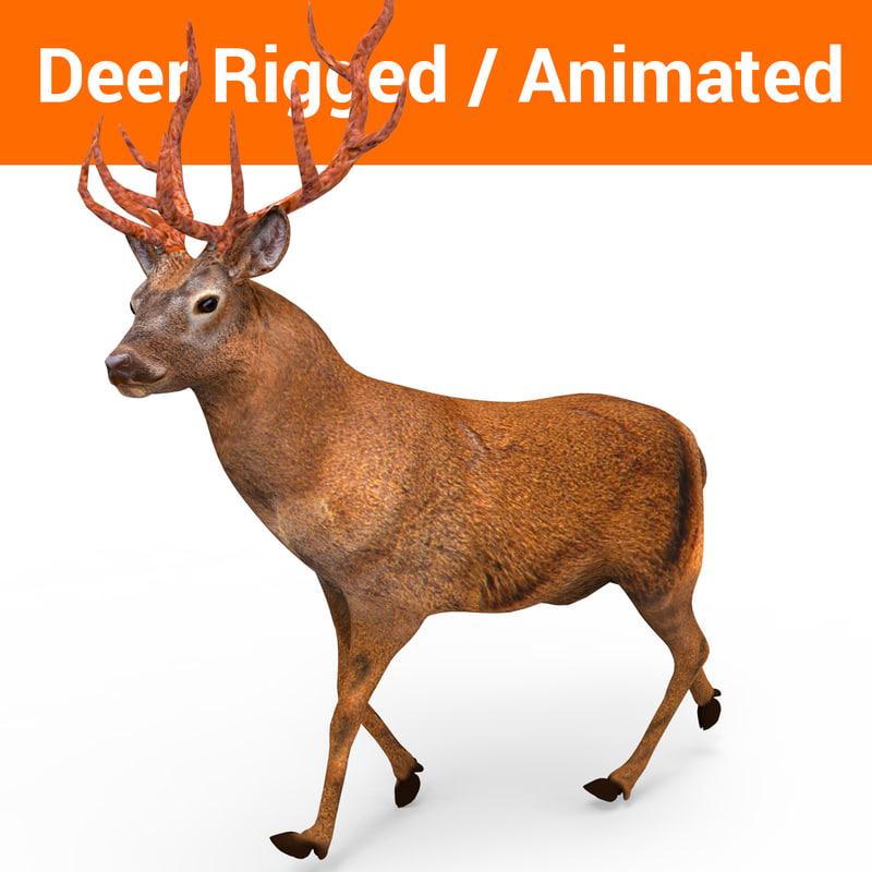 deer rigged animation model