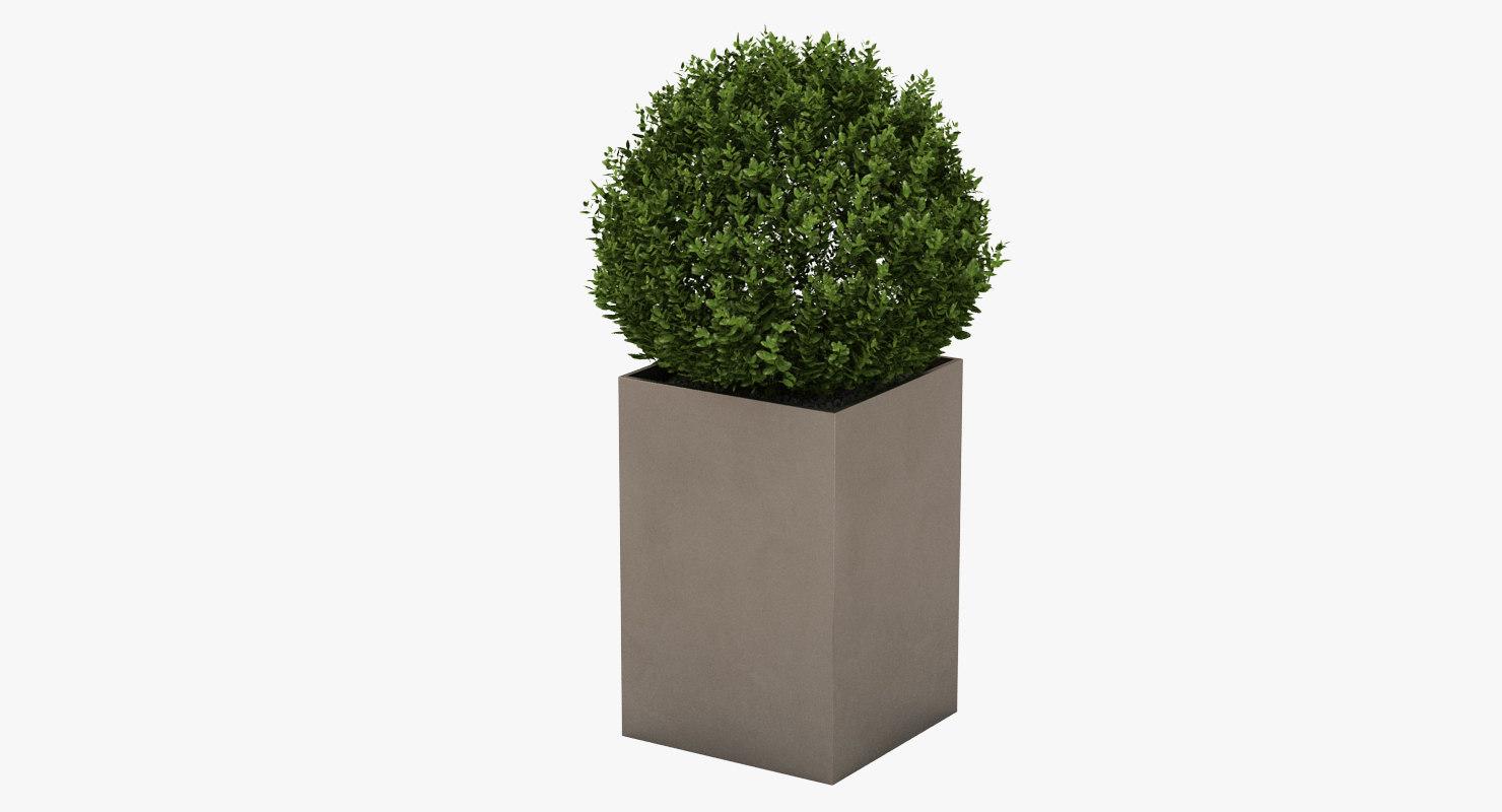 planter realistic 3D model