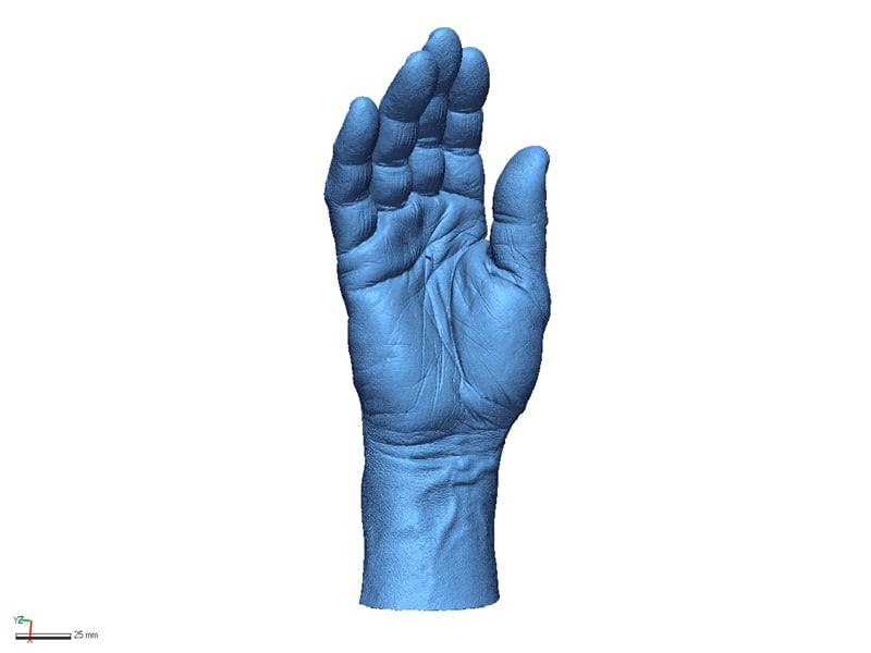3D body parts model