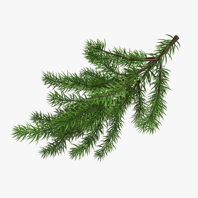 christmas fir branches 3D