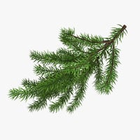 christmas fir branches 3D