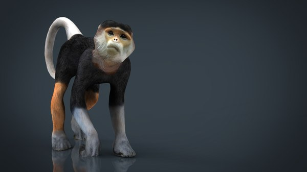 Monkey Maya Models for Download | TurboSquid