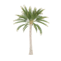 straight palm tree 3D