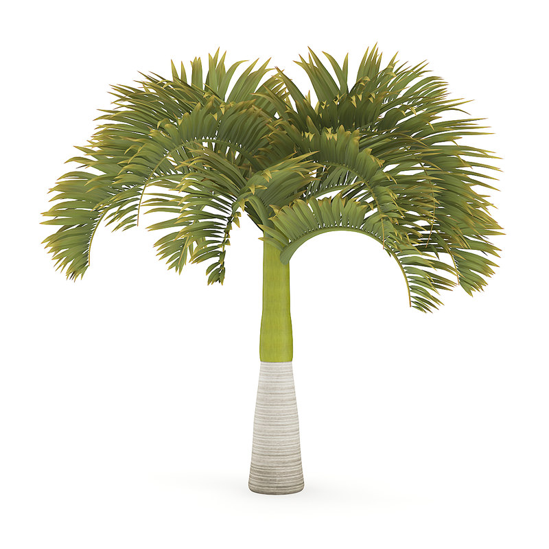 3D christmas palm tree