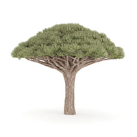 3D dragon tree model