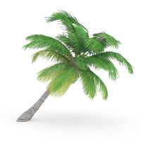 sloping palm tree 3D model