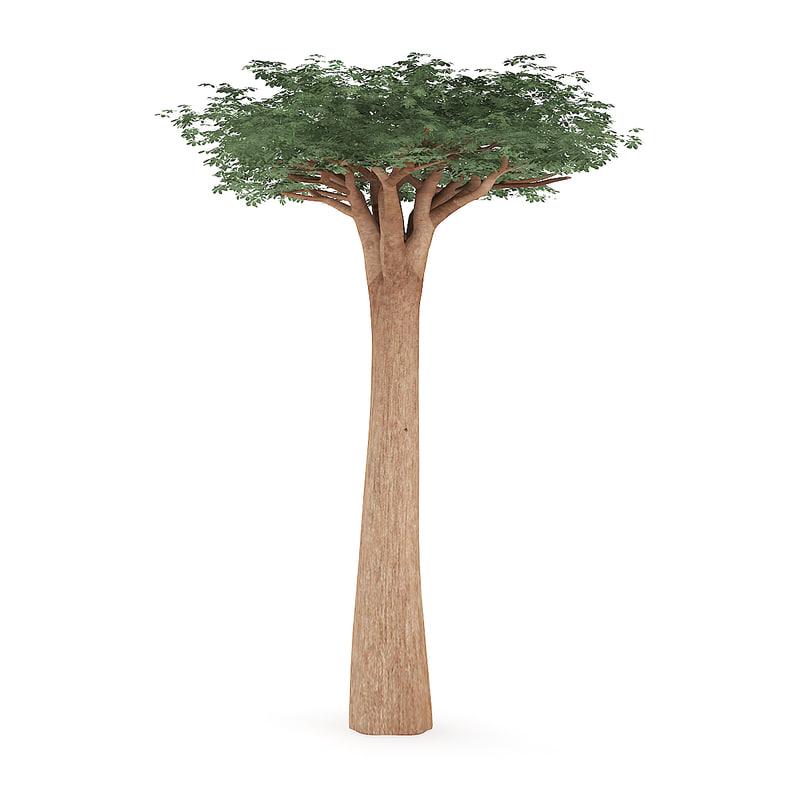 3D baobab tree
