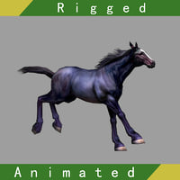 3D horse rigged 01 animation model
