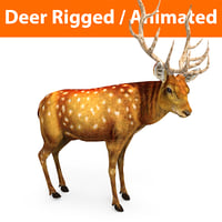 deer rigged animation 3D