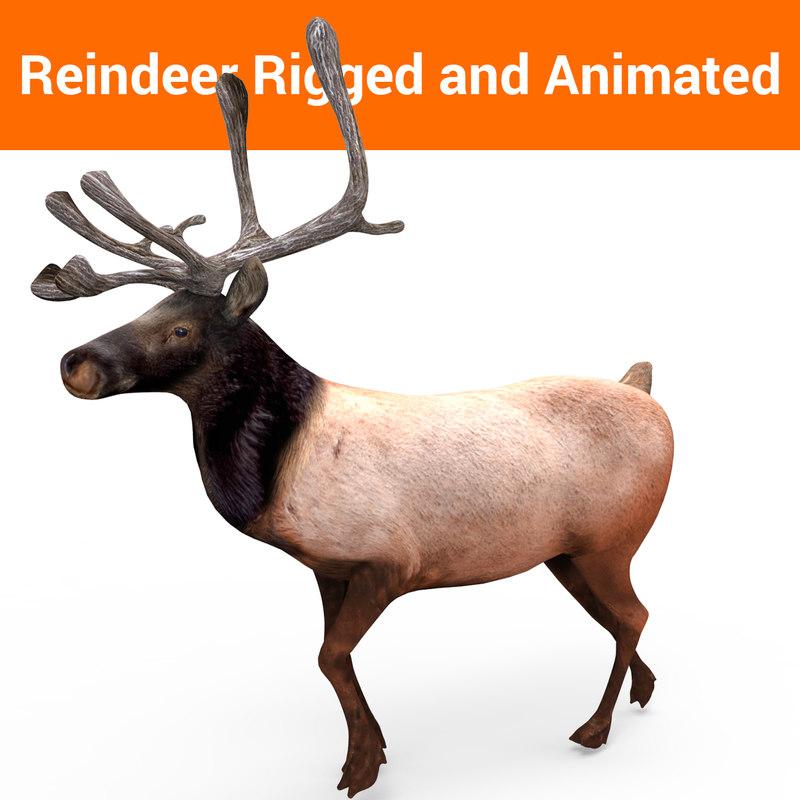 reindeer rigged animation 3D model
