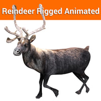 Reindeer Rigged  Animated model